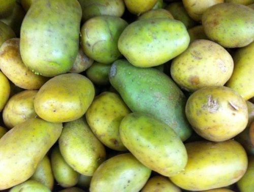 tn_Potatoes fresh 1